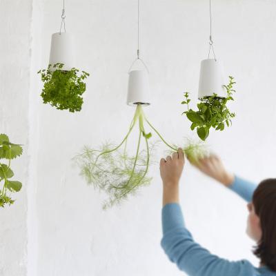 Sky Planter | Hangende Bloempot