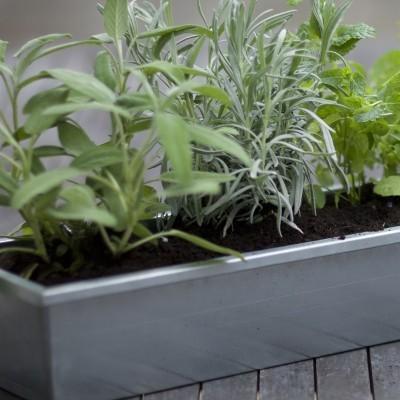 Plantenbak balkon zinken bloembak 80 cm for Balkon bloembak