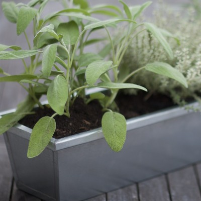 Plantenbak Balkon - Zink 80 cm