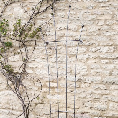 Metalen Klimplantenrek Barrington